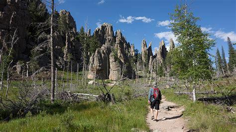 south dakotas custer state park  convincing tech