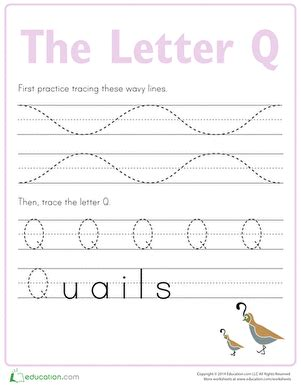 letter q tracing practice worksheet education 507 | letter tracing practice
