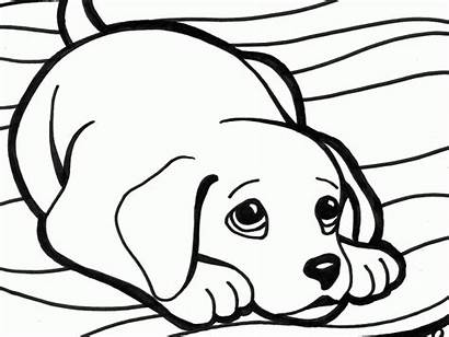 Coloring Dogs Pages Printable Getcolorings