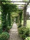 Pergola   Front and Back house   Covered pergola, Pergola covered garden walkway