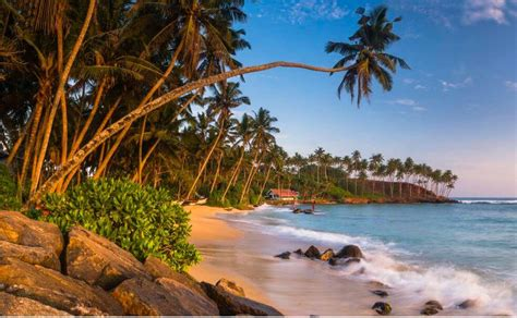 19 Photos That Will Make You Wish You Were In Sri Lanka ...