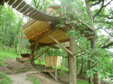 View-picture Of Living-room Treehouses, Machynlleth