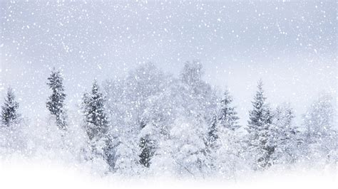 Snow Background Snow Backgrounds Pictures Wallpaper Cave