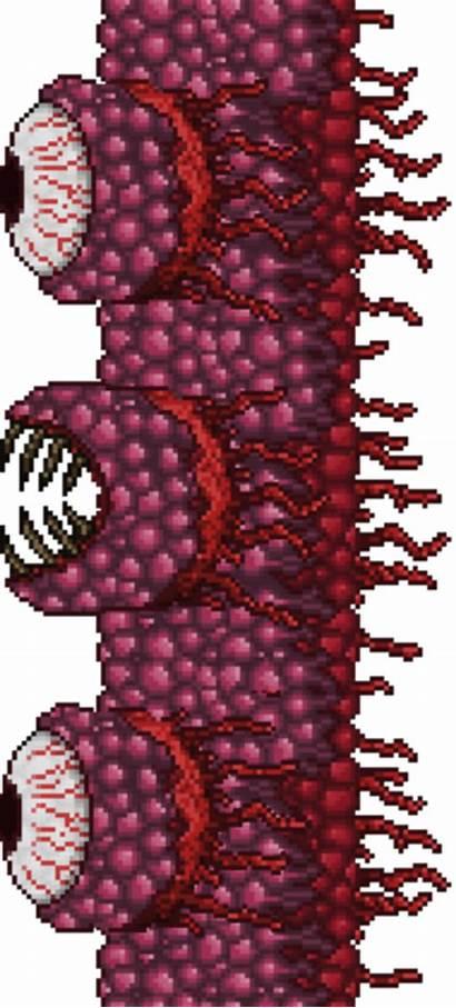 Terraria Flesh Monstros Boss Wiki Wikia Novos