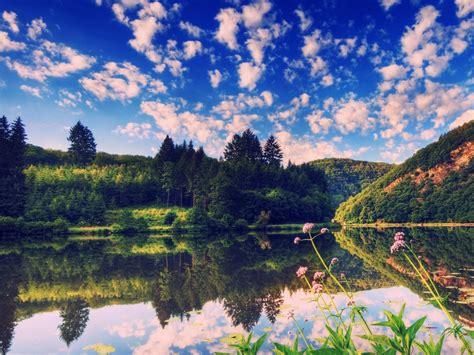 Summer Nature Scenes