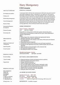 24 award winning ceo resume templates wisestep for Best ceo resume