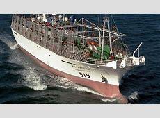 Fishing Boat Vanishes Near Falkland Islands