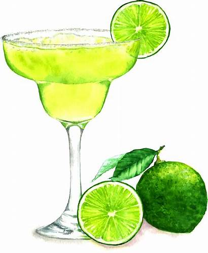 Margarita Clipart Drawing Daiquiri Transparent Getdrawings Cocktail