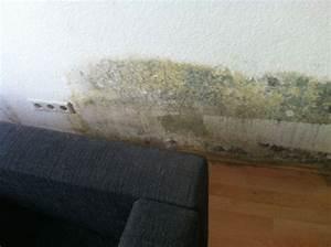 Schimmel In Wohnung Was Tun : schimmel in der wohnung hilfe was tun whg ~ Watch28wear.com Haus und Dekorationen