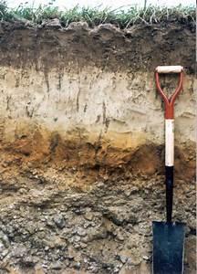 Haven Soil Profile
