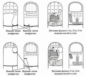 Лечение грибка ногтя лазером в тольятти