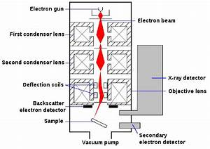 15  Schematic Diagram Of Sem  Scanning Electron Microscope