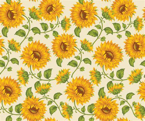 Dark Souls 2 Wallpaper 1080p Sunflower Wallpaper High Quality Nature Hd Wallpaper