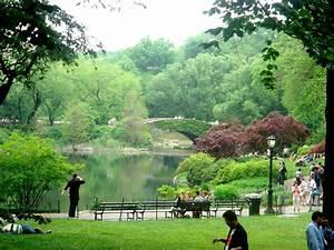 Central Park Auto : 5 things to do in central park ~ Gottalentnigeria.com Avis de Voitures