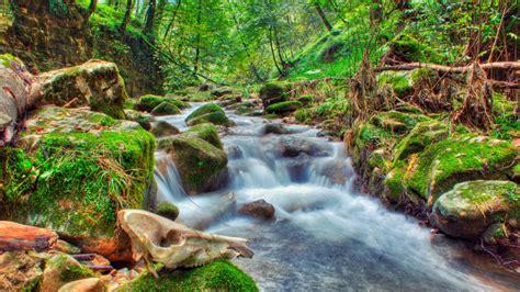 Nice River Wallpaper 2560x1600 : Wallpapers13.com