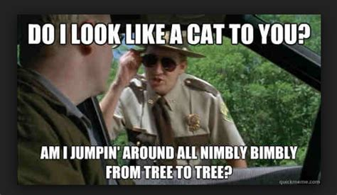 Super Troopers Meme - 20 super troopers memes everyone s sharing sayingimages com