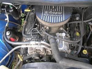 Need Pics Of Engine Bay 5 9l