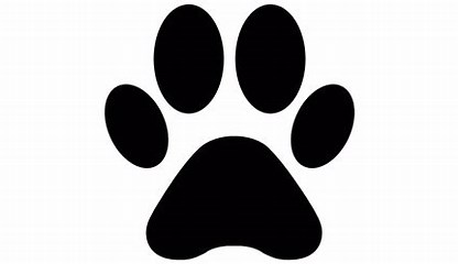 Image result for paw print icon