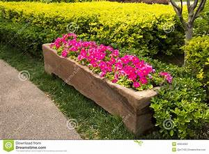 Stone, flower bed, flower stock image. Image of beds ...