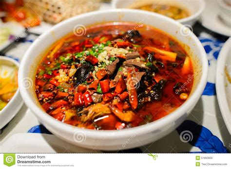 cuisine spicy sichuan style spicy food stock photo image 51893800