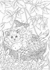 Coloring Cradle Favoreads Dieren Depuis Lovense sketch template