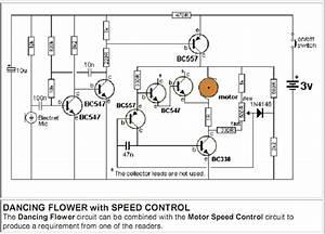 Dancing Flower Circuit Diagram