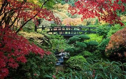 Gardens Garden Japanese Portland America Oregon Trip