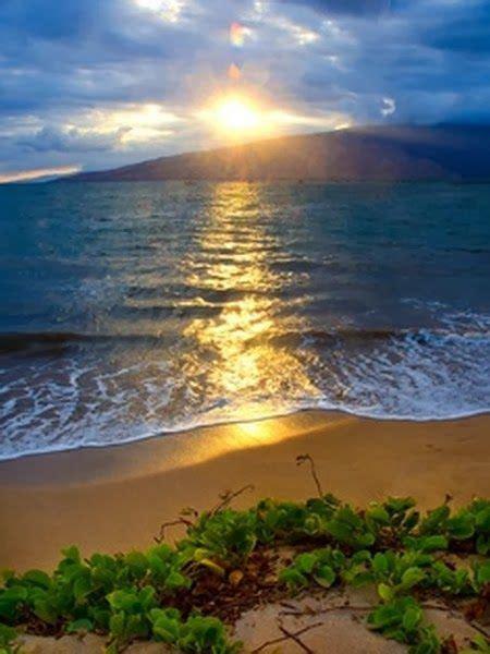 Beautiful Maui Hawaii Beaches