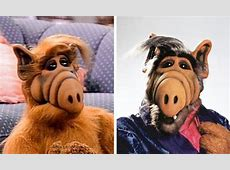 An exquisite bit of nostalgia The stars of ALF, 30 years