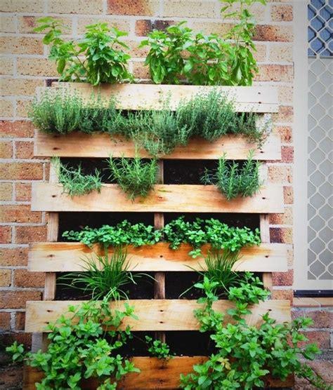Vertical Herb Garden Pallet by Pallet Herb Garden A Source Of Remedy Pallet