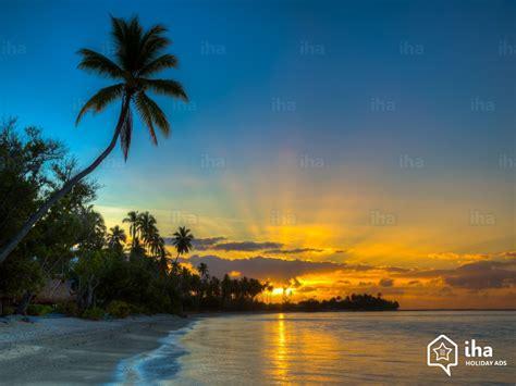 photo de peinture de chambre chambres d 39 hôtes polynésie française iha com