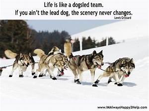 Dog Sled Lewis ... Dog Sledding Quotes