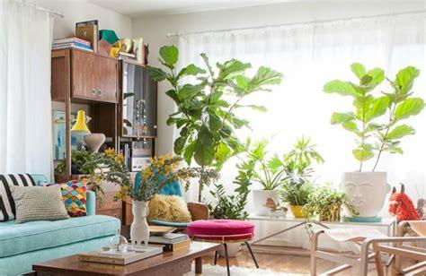 cheerful living room ideas  plants covet edition