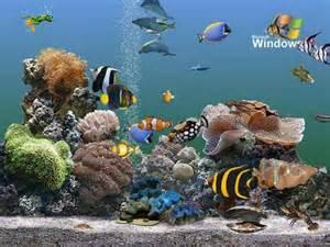 fond d 195 169 cran aquarium anime gratuit