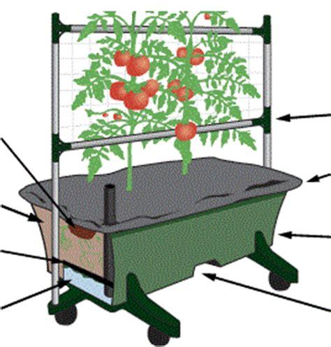 diy self watering garden box all things green