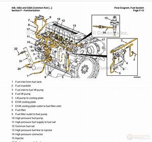 5 9 Cummins Fuel System Diagram