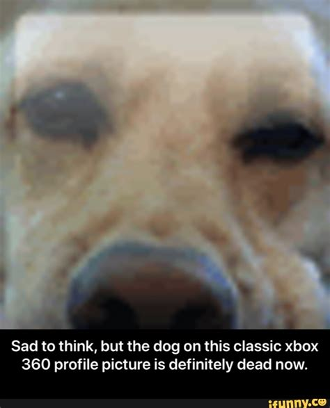 Meme Pfp Xbox The Best Xbox One Memes Memedroid Xbox Fans Deserve Some Banter After Years Of