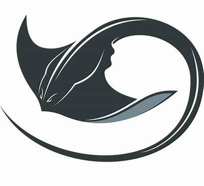 Manta Ray Vector Swimming Stingray Clip Illustration