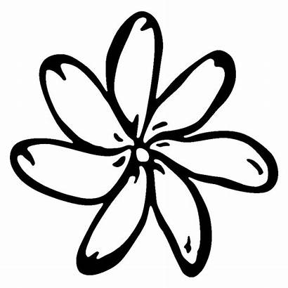 Tiare Flower Sticker Vinyl 9cm 15cm Styling