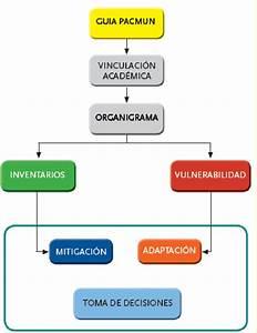 1  Diagrama De Flujo De Proceso De Elaboraci U00f3n Del Pacmun