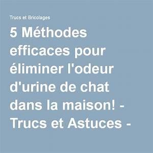 Odeur Urine Chat : 5 m thodes efficaces pour liminer l 39 odeur d 39 urine de chat dans la maison produit naturel ~ Maxctalentgroup.com Avis de Voitures