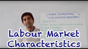 Characteristics Of A Perfectly Competitive Labour Market
