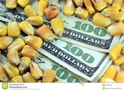 Commodity Trading Concept  Us Currency One Hundred Dollar. Brooklyn Divorce Lawyer How To Garnish A Dish. Problem Management Itil Custom Campaign Signs. Pennsylvania Corporate Search. Sleep Study Technician School. Emergency Loans For Military. Can You Block Your Ip Address. Dlp Technology Explained Heritage Of The Blind. School Of Nursing In Maryland