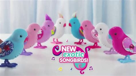 pets exotic songbirds tv commercial dazzling