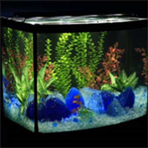 aquarium glass gravel pebbles  rocks  colorful