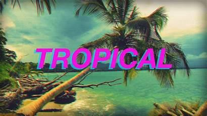 Vaporwave Aesthetic Neon Wallpapers 4k Tropical Backgrounds