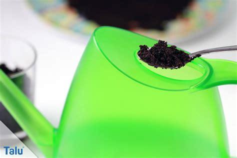kaffeesatz als blumendünger für zimmerpflanzen kaffeesatz als d 252 nger hervorragend f 252 r garten und