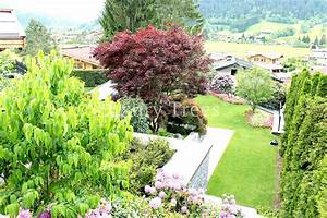Garten Sichtschutz Pflanzen : sichtschutz aus pflanzen f r garten terrasse luxurytrees ~ Watch28wear.com Haus und Dekorationen