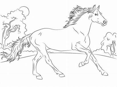 Coloring Horse Pages Spirit Colouring Breeds Templates