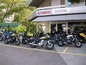Yamaha Xsr 700 Occasion : yamaha xsr 700 abs sciaroni motoservice minusio occasion ~ Medecine-chirurgie-esthetiques.com Avis de Voitures